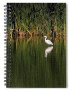 Snowy Egret In Marsh Reinterpreted Spiral Notebook