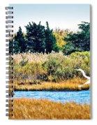 Snowy Egret-island Beach State Park N.j. Spiral Notebook