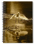 Snowy Egret Landing With Golden Tones Spiral Notebook