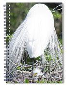 Snowy Egret Mom And Chick Spiral Notebook