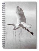 Snowy Egret Morning Bw Spiral Notebook