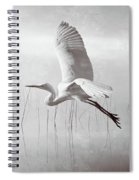 Snowy Egret Morning Bw Spiral Notebook