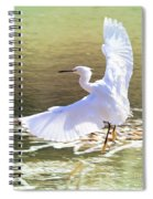 Snowy Egret Over Golden Pond Spiral Notebook
