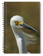 Snowy Egret Profile 2 Spiral Notebook