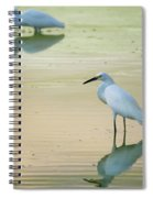 Snowy Egret Reflections  Spiral Notebook