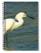 Snowy Egret Spiral Notebook
