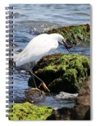 Snowy Egret  Series 2  2 Of 3  Preparing Spiral Notebook