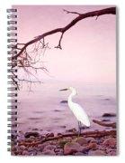 Snowy Egret Solitude Spiral Notebook