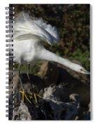 Snowy Egret Stretch Spiral Notebook