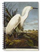 Snowy Heron Spiral Notebook