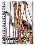 Snowy Heron? Spiral Notebook