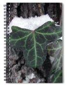 Snowy Ivy Spiral Notebook