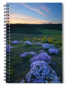 Snowy Phlox Sunset Spiral Notebook