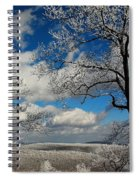 Snowy Sunday Spiral Notebook