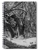 Snowy Tree Bench In Black And White Spiral Notebook
