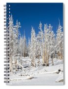 Snowy Trees Spiral Notebook
