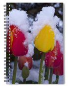Snowy Tulips Spiral Notebook