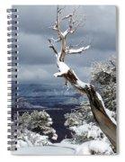 Snowy View Spiral Notebook