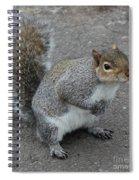 So.... Got Nuts? Spiral Notebook