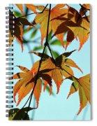 Soaking Sun Spiral Notebook