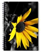 Soaking Up The Yellow Sunshine Spiral Notebook