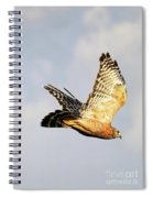 Soaring Hawk Spiral Notebook