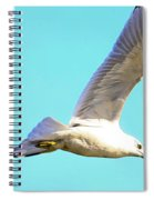 Soaring In A Blue Sky Spiral Notebook