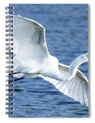 Soaring Spiral Notebook