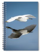 Soaring Over Still Waters Spiral Notebook