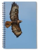 Soaring Red Tail Hawk Spiral Notebook