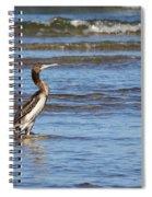 Socotra Cormorant Spiral Notebook