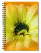 Sodden Petals   Spiral Notebook