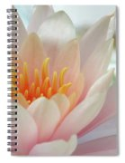 Soft And Delicate Water Lily Spiral Notebook