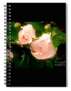 Soft And Pretty Spiral Notebook