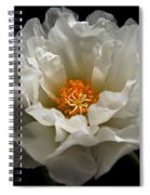 Soft And Pure Spiral Notebook
