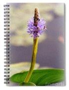 Soft Beauty Spiral Notebook