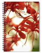 Soft Colors Natural Canvas Spiral Notebook