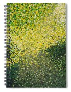 Soft Green Light  Spiral Notebook