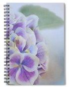 Soft Hydrangeas On Blue Spiral Notebook