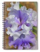 Soft Iris Spiral Notebook
