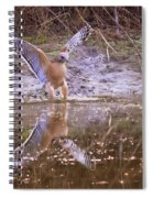 Soft Landing On The Pond Spiral Notebook