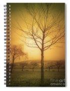 Soft Light In Summerland Spiral Notebook