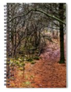 Soft Light In The Woods Spiral Notebook
