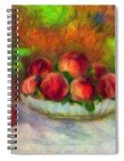 Soft Peaches Still Life Spiral Notebook