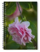 Soft Pink Camellia Spiral Notebook