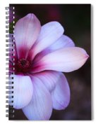 Soft Pink Magnolia Spiral Notebook
