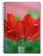 Soft Red Spiral Notebook