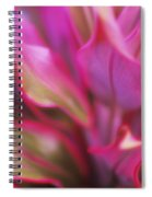 Soft Red Ti Spiral Notebook