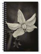 Soft Sepia Bloom Spiral Notebook