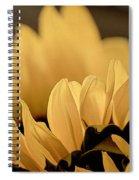Soft Summer Light 2 Spiral Notebook